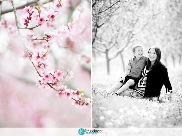 Liz Czinege Family Photographer Niagara Hamilton2