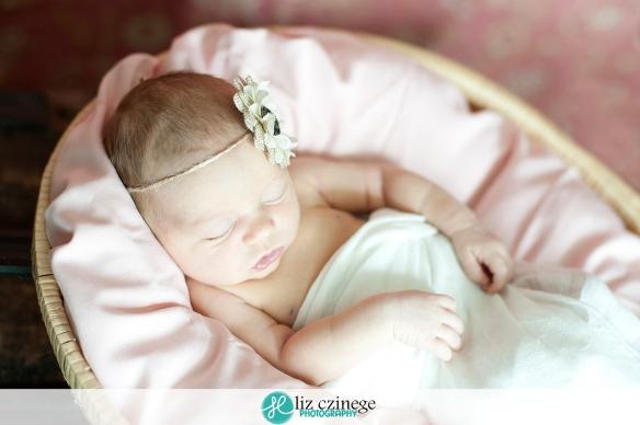 Liz Czinege Newborn Photographer Niagara Hamilton16