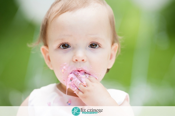 Allie-12-6 | Liz Czinege Niagara and Hamilton Newborn and Child Photographer