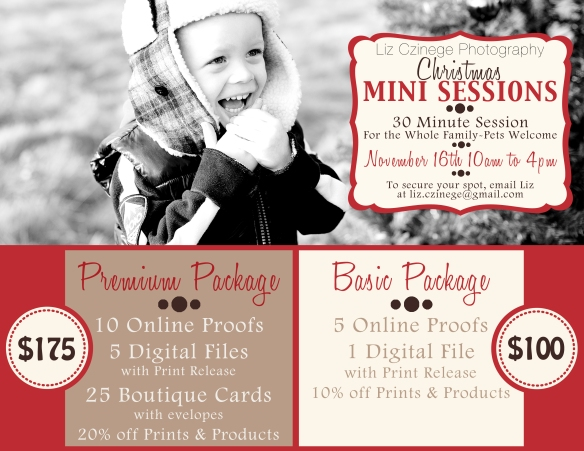 chirstmas mini session liz czinege niagara photographer
