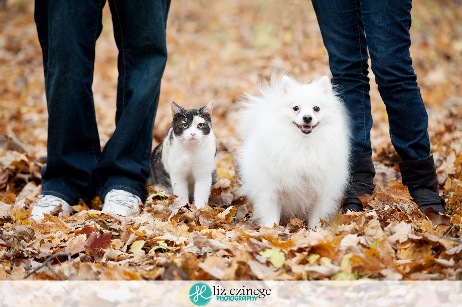 liz czinege niagara family photographer1