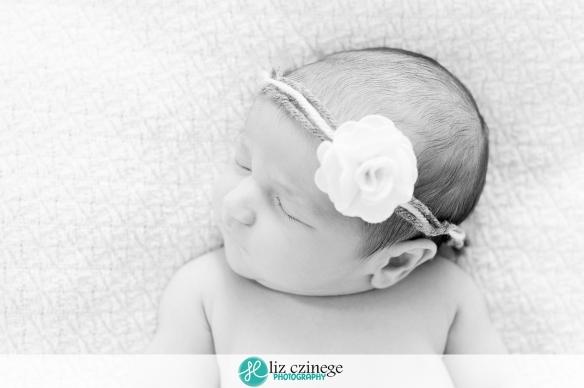 liz czinege niagara hamilton newborn photographer05