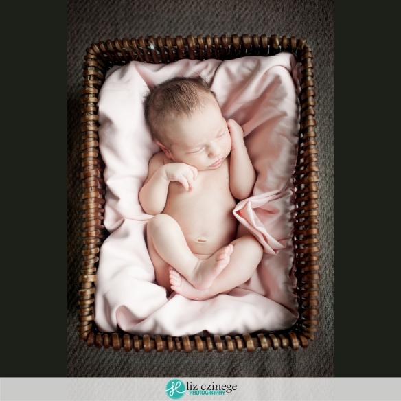 Liz Czinege Niagara Hamilton Newborn Photographer09