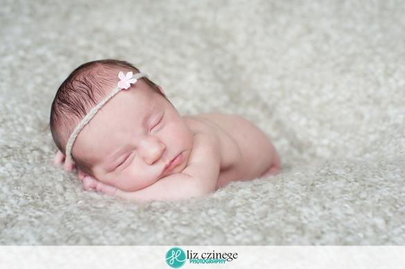 Liz Czinege Niagara Hamilton Newborn Photographer11