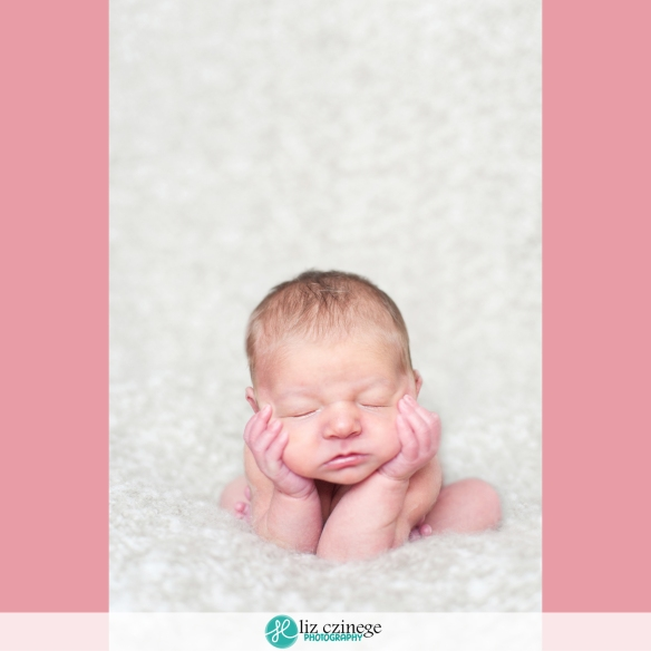 Liz Czinege Niagara Hamilton Newborn Photographer19