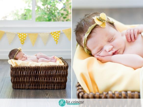 liz_czinege_photography_niagara_hamilton_newborn01