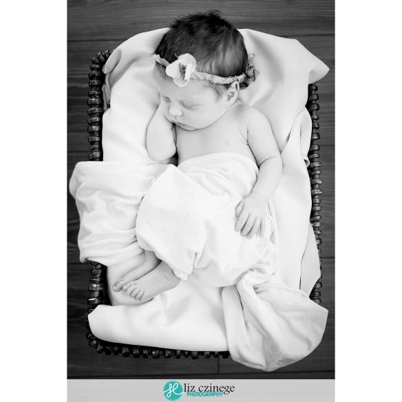 liz_czinege_photography_niagara_hamilton_newborn10