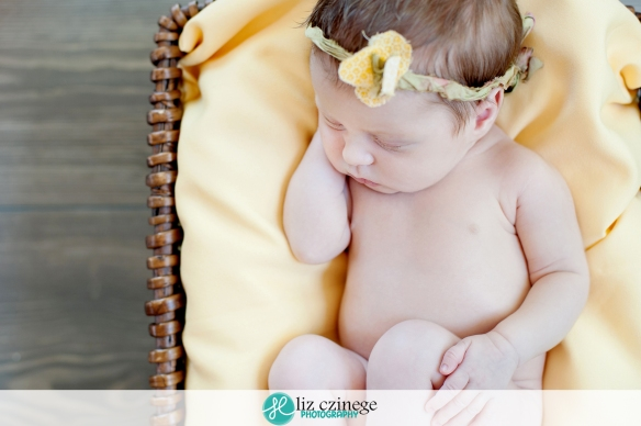 liz_czinege_photography_niagara_hamilton_newborn11