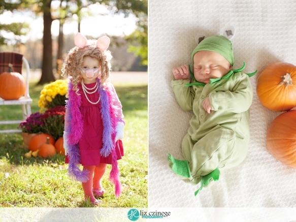 liz_czinege_newborn_photographer_niagara_hamilton12