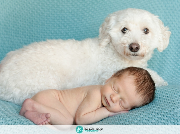 liz_czinege_hamilton_niagara_newborn_child_photographer16