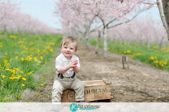 liz_czinege_niagara_hamilton_child_photographer01