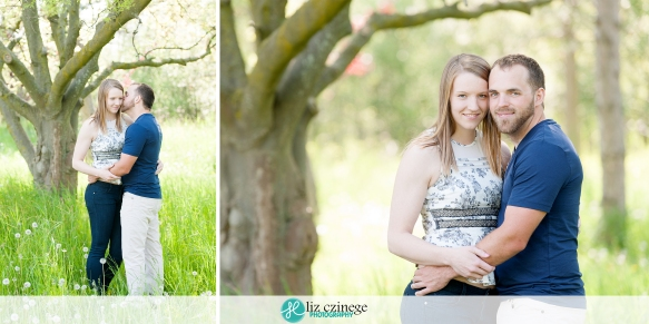 liz_czinege_niagara_hamilton_engagement_wedding_photographer01
