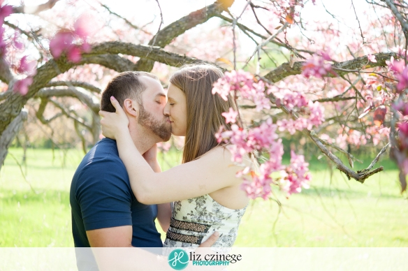 liz_czinege_niagara_hamilton_engagement_wedding_photographer06