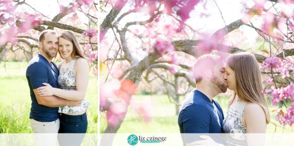 liz_czinege_niagara_hamilton_engagement_wedding_photographer09