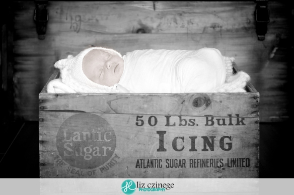 liz_czinege_niagara_hamilton_grimsby_newborn_photographer06