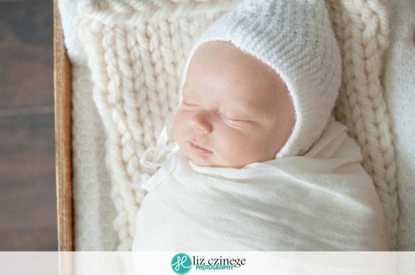 liz_czinege_niagara_hamilton_grimsby_newborn_photographer08