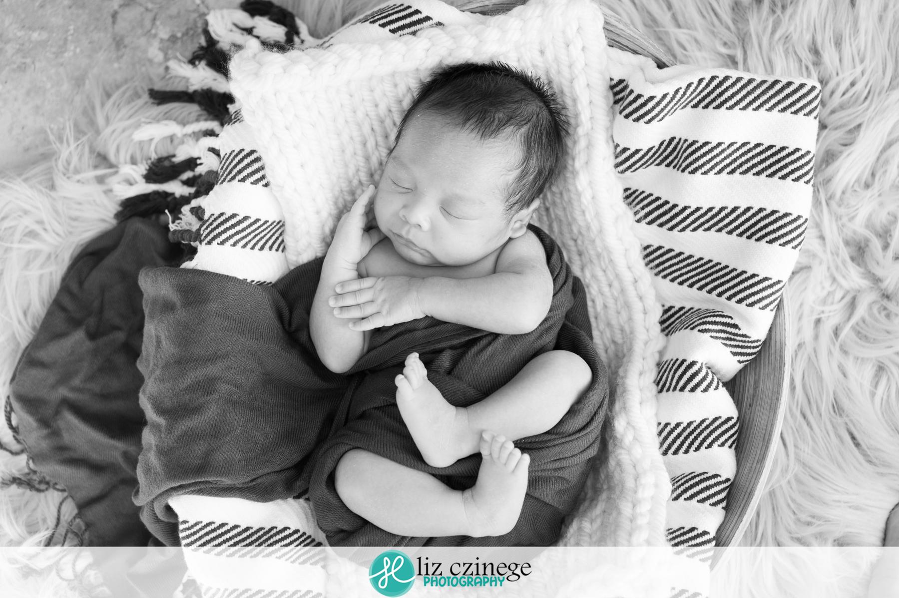 liz_czinege_niagara_grimsby_newborn_photographer07