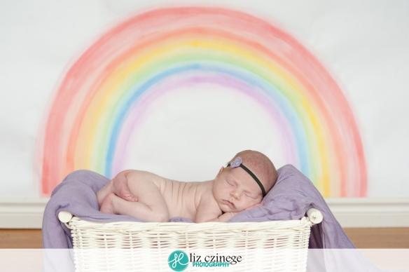 liz_czinege_niagara_grimsby_newborn_photographer01