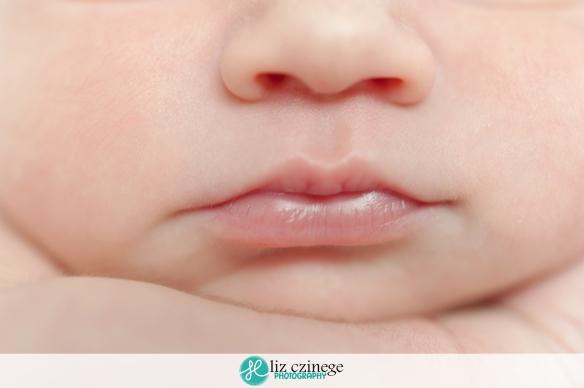 liz_czinege_niagara_grimsby_newborn_photographer02