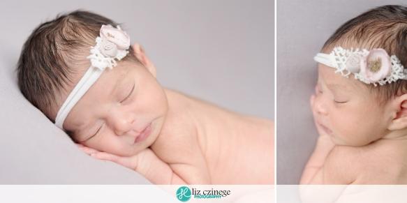 liz czinege niagara grimsby newborn twin photographer02