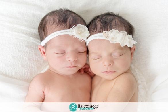 liz czinege niagara grimsby newborn twin photographer05